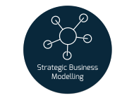strategic business modelling